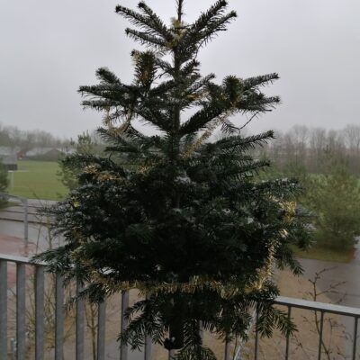 Christmas tree feet and sales pitch equipment